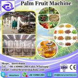 FFB production line /small palm oil mill in Mayasia